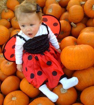 Cora ladybug slack jawed